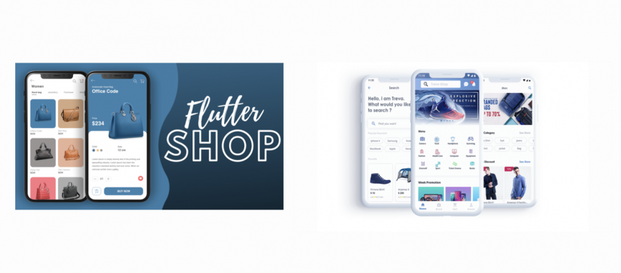 Free vs Paid Flutter template